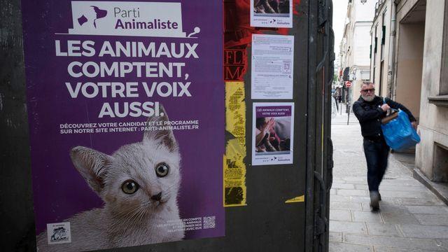 Une affiche du Parti animaliste. [Joël Saget - AFP]