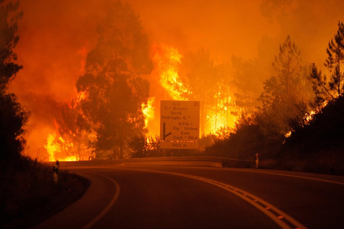 Trois jours de deuil national après l'incendie de forêt meurtrier — Portugal
