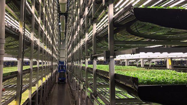 """Résultat de recherche d'images pour """"fermes verticales"""""""