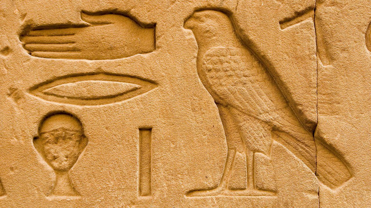 Un hiéroglyphe représentant un faucon sur le Temple d'Horus en Egypte. [Michel Gunther - Biosphoto/AFP]