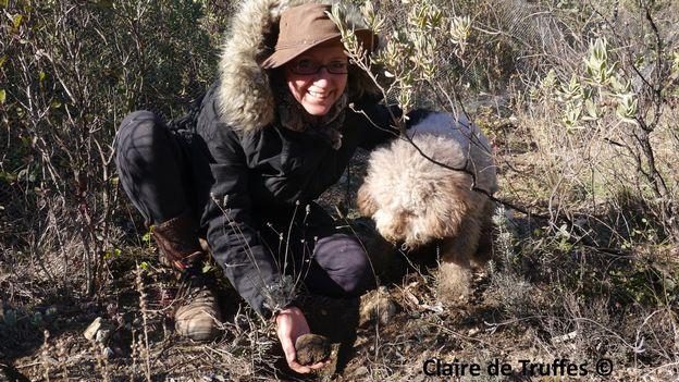 Claire de truffes