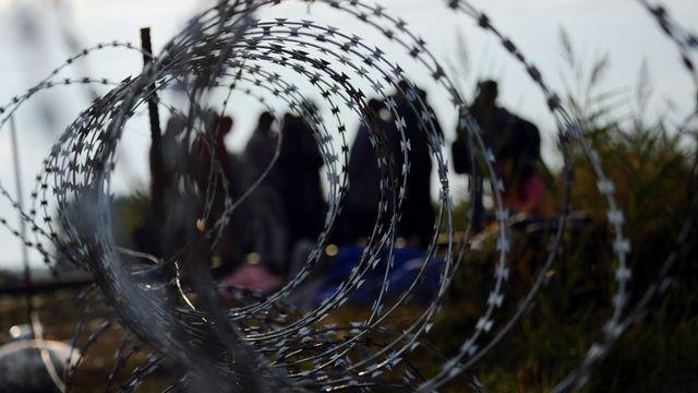 Migrants: des barbelés sur la prairie en Hongrie. [Attila Kisbenedek - AFP]
