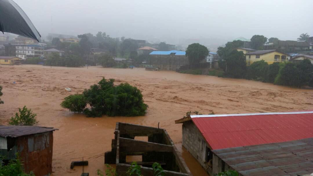 Sierra Leone : des inondations font plus de 300 morts