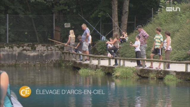 Des jeunes s'adonnent à la pêche pour se rapprocher de la nature [RTS]