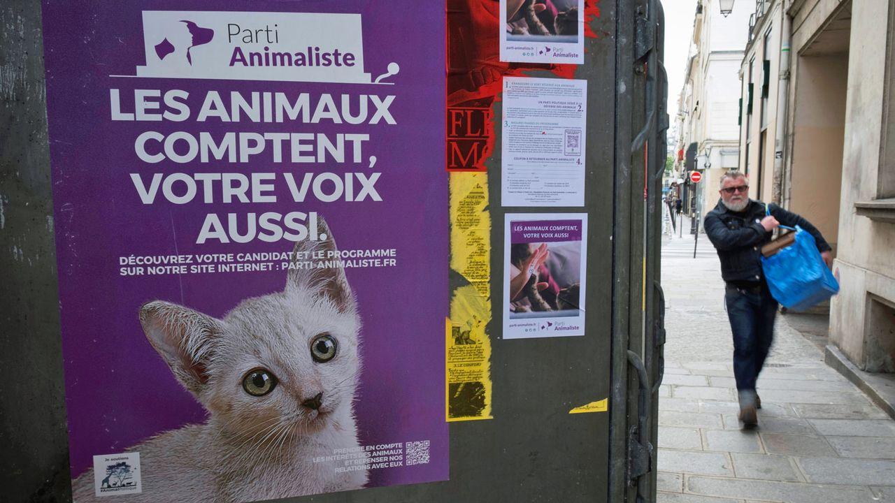 Affiche du Parti animaliste français lors des législatives de juin 2017. [Joël Saget - AFP]