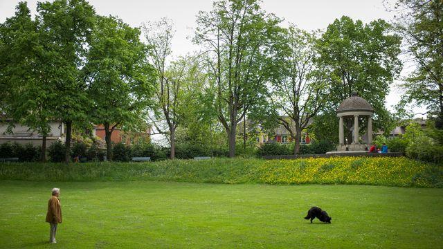 Les villes devront revoir leur stratégie des espaces verts, comme ici à Berne. [Alessandro della Valle - Keystone]