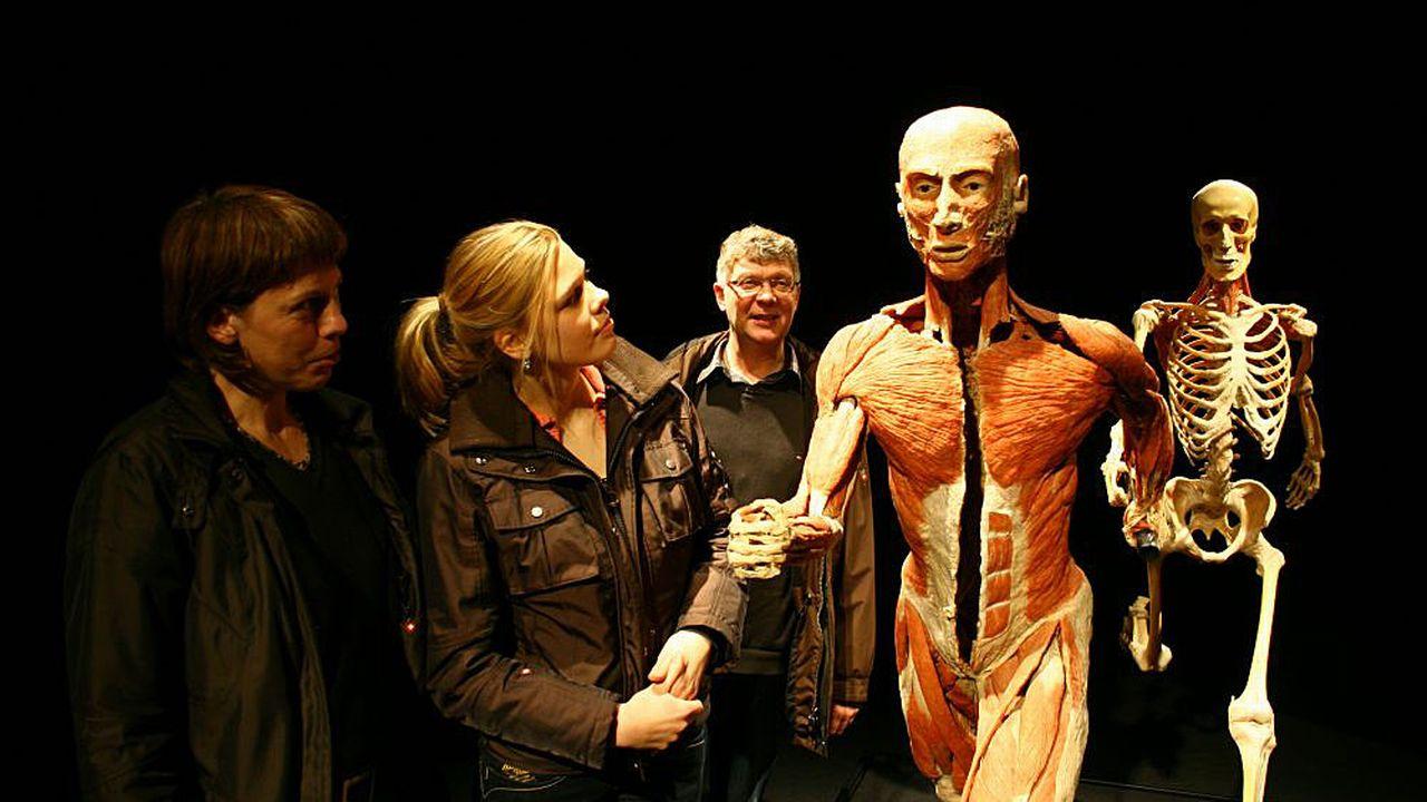 L'exposition montre des études anatomiques de corps humains, de la naissance à la mort. [© Gunther von Hagens' BODY WORLDS, Institute for Plastination, Heidelberg, Germany.]
