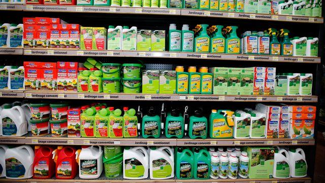 Le glyphosate est présent dans une majorité des herbicides commercialisés. [Charles Platiau - Reuters]