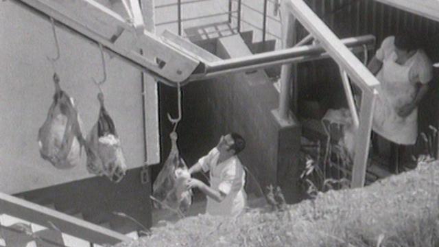 Une usine de viande séchée [RTS]
