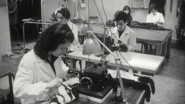 Le métier de mécanicienne en fourrure en 1966. [RTS]