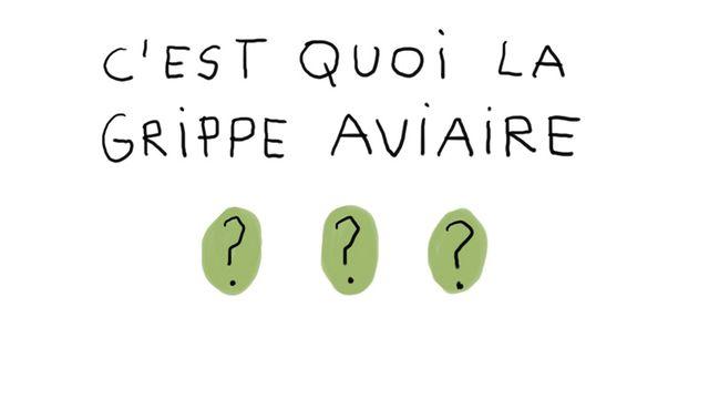 C'est quoi la grippe aviaire? Une vidéo de France Télévisions Education [education.francetv.fr - France Télévisions Education]