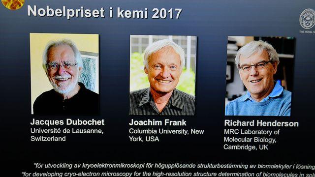 Le prix Nobel de chimie 2017 a été attribué à trois biophysiciens, dont le Suisse Jacques Dubochet. Atila Altuntas/ANADOLU AGENCY AFP [Atila Altuntas/ANADOLU AGENCY - AFP]