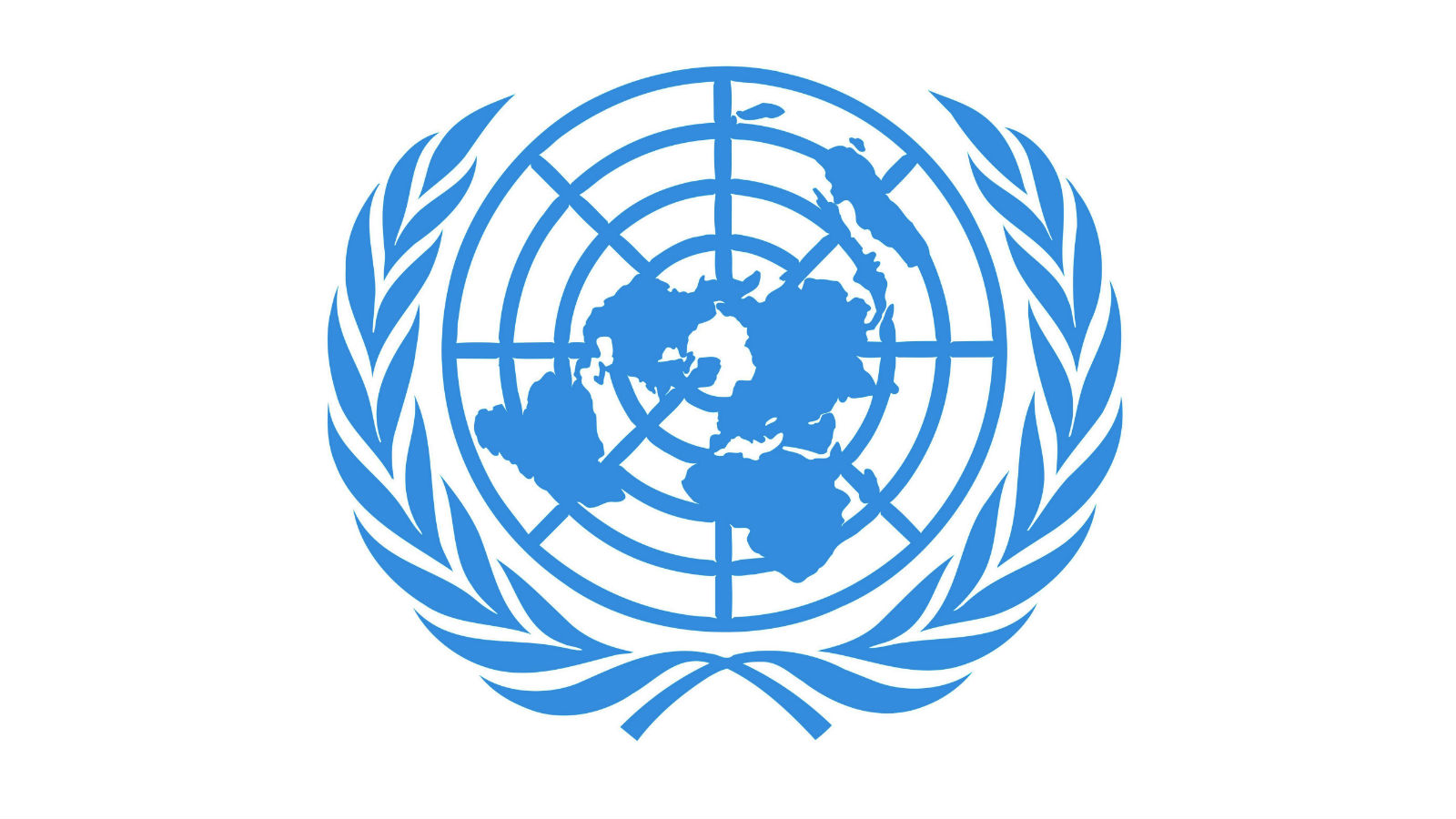 Organisation des Nations Unies