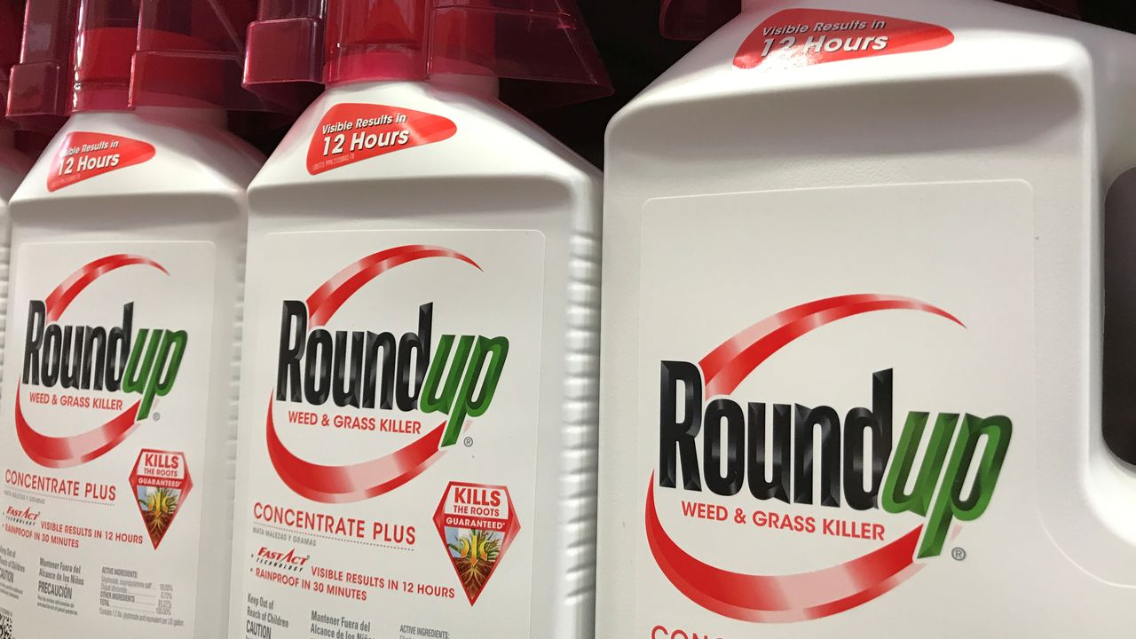 Des bidons de Roundup, le fameux désherbant la firme Monsanto à base de glyphosates, sous le feu des critiques pour son supposé caractère cancérigène. [Mike Blake - Reuters]