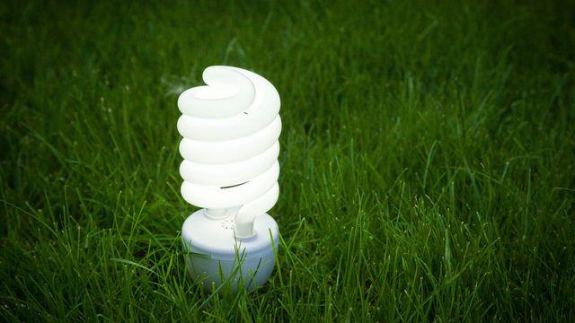 Ampoule à basse consommation. [BillionPhotos.com - Fotolia]