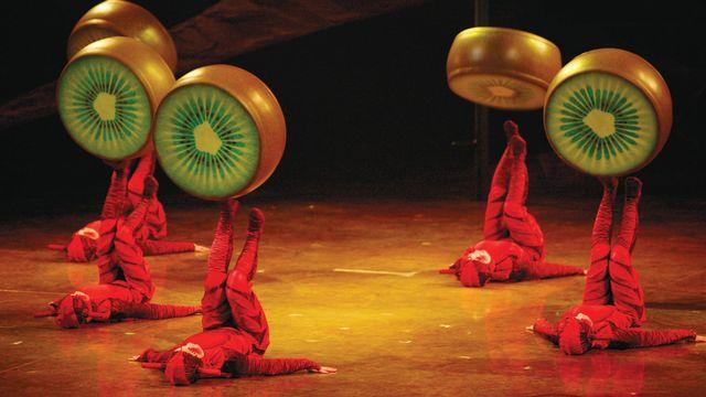 """""""Fourmis"""", un extrait du spectacle """"Ovo"""" du Cirque du Soleil. [Benoit Fontaine - cirquedusoleil.com]"""
