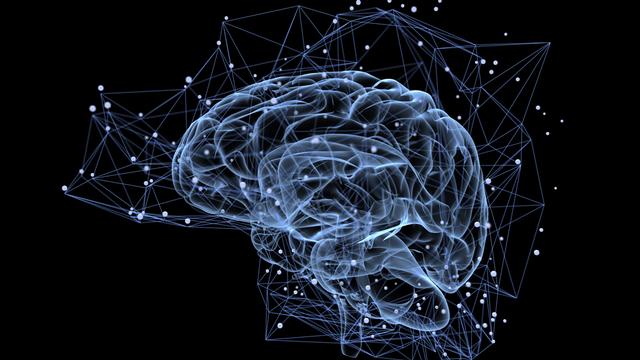 Comment fonctionne le système de récompense dans le cerveau? [Tatiana Shepeleva - Fotolia]