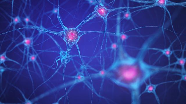 Est-ce que ces substances laissent des traces dans notre cerveau? [Nobeastsofierce - Fotolia]