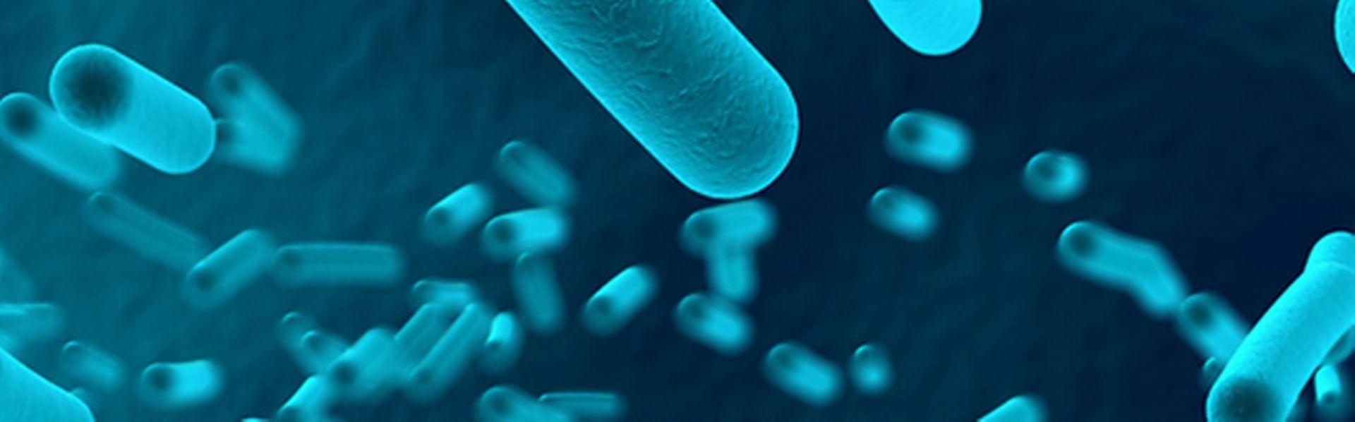 Accroche microbes [martanfoto - © Fotolia]