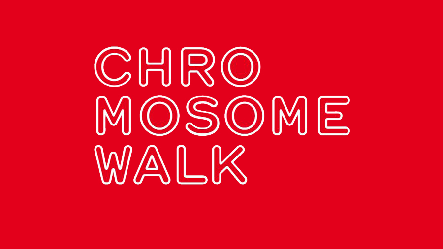 Chromosome Walk