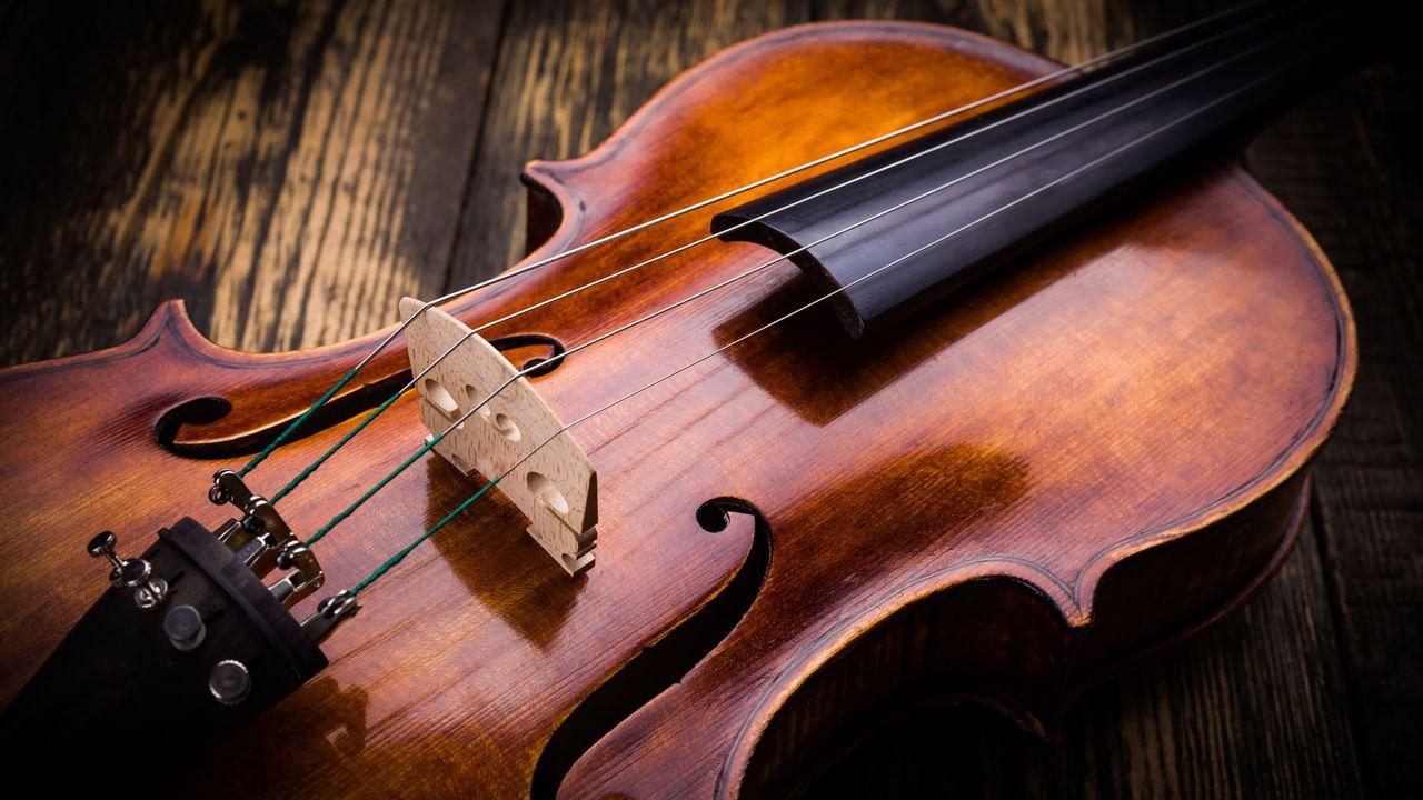 Un violon sonne juste quand SES pièces maîtresses sont faites à partir d'un bois d'exception. [Szasz-Fabian Jozsef - Fotolia]
