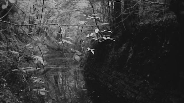 Vestige du canal d'Entreroches en 1969. [RTS]