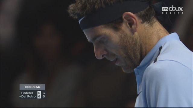 Bâle, finale : R. Federer (SUI) - Del Potro (ARG) (6-7) [RTS]