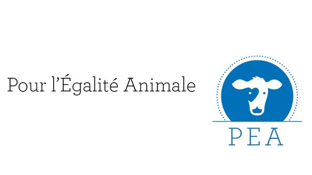L'association PEA - Pour l'Égalité Animale [https://www.asso-pea.ch/fr/]