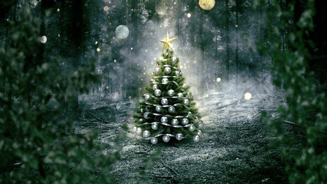 Le sapin de Noël, l'un des symboles des fêtes de fin d'année dans le monde chrétien. [lassedesignen - Fotolia]