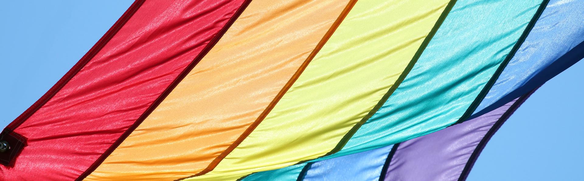 Dossier homosexualité de RTS Découverte [Christopher Bradshaw - Fotolia]
