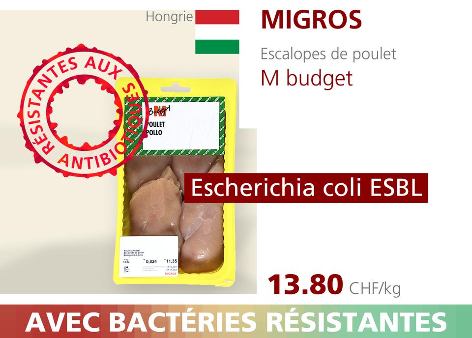 ABE WEB antibio 00009 [RTS]