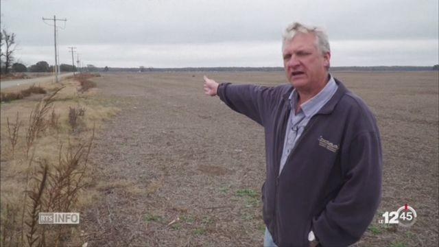 Etats-Unis: un nouvel herbicide appelé Dicamba suscite une avalanche de plaintes [RTS]