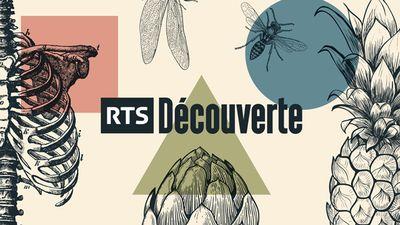 """Résultat de recherche d'images pour """"TSR Découverte"""""""