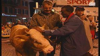 Tolossa Chengere recevant son taureau à la Corrida bulloise de 2004. [RTS]
