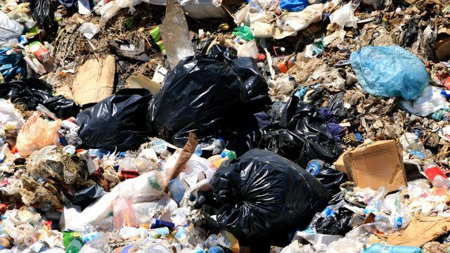 Le dossier sur les déchets de RTS Découverte [©kanvag - Fotolia]