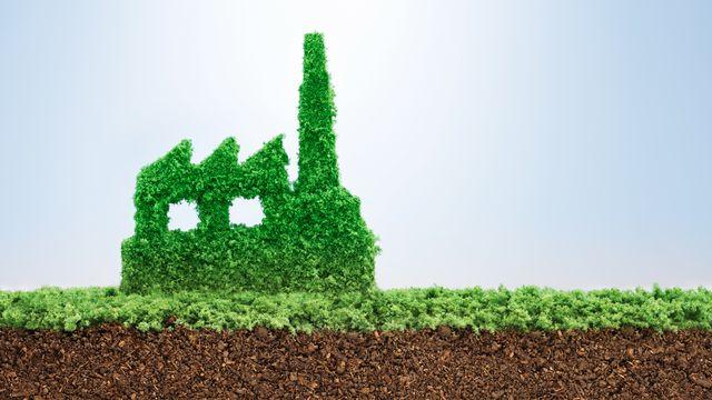 Investir dans le courant vert participatif [pogonici - fotolia]