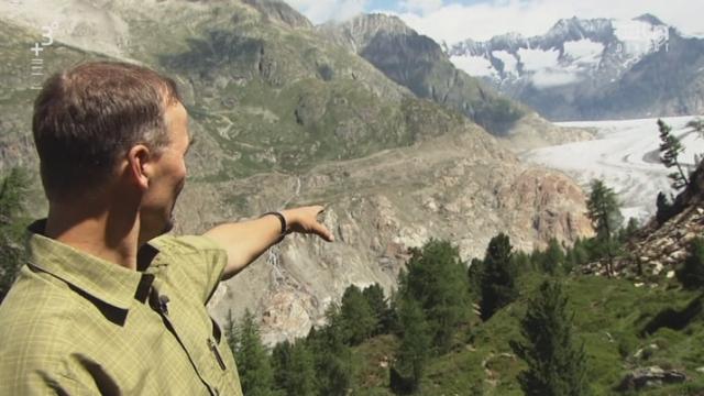 Le glacier d'Aletsch au cœur du changement climatique [RTS]
