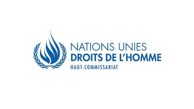 Le Haut-Commissariat des Nations Unies aux droits de l'homme (HCDH) [www.ohchr.org]