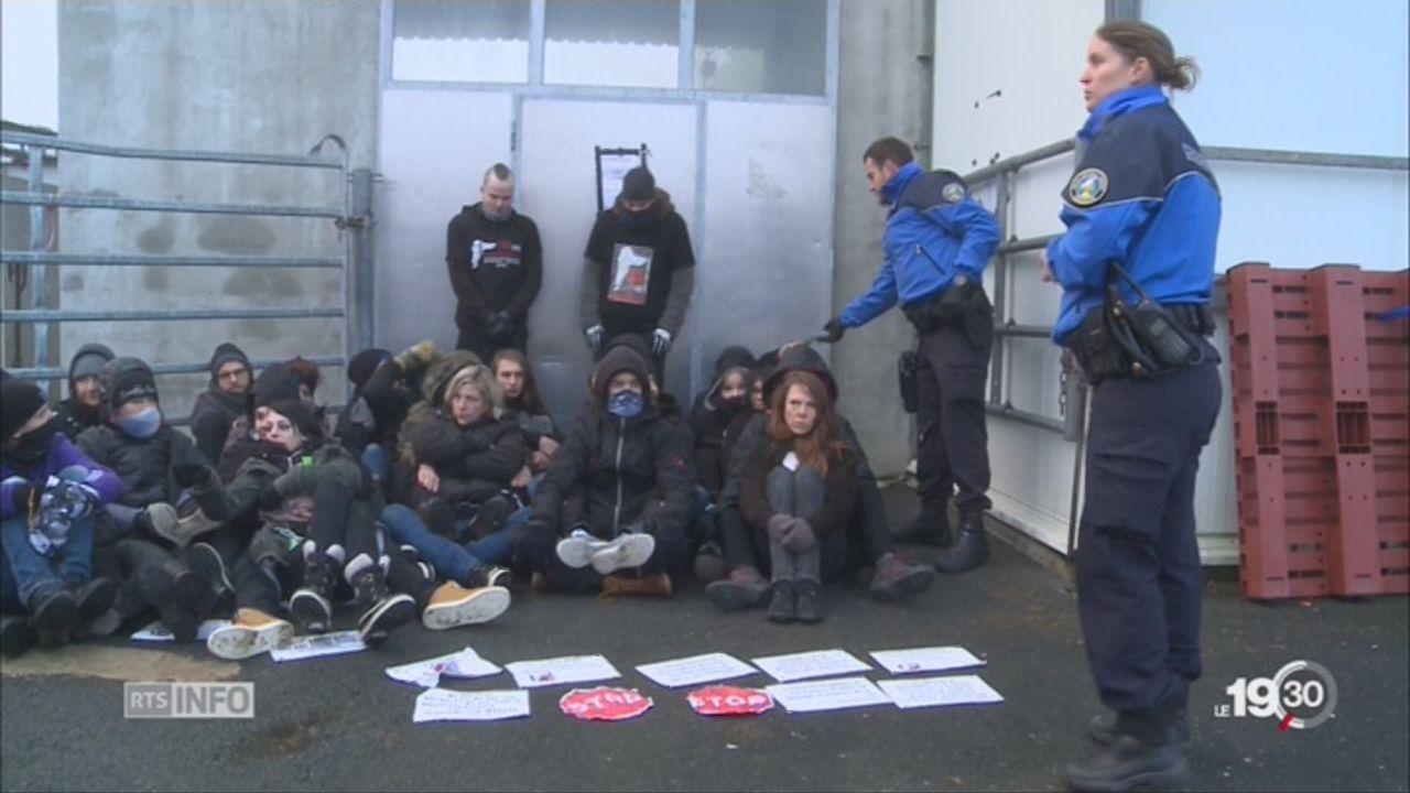 Vich: des antispécistes bloquent l'abattoir [RTS]