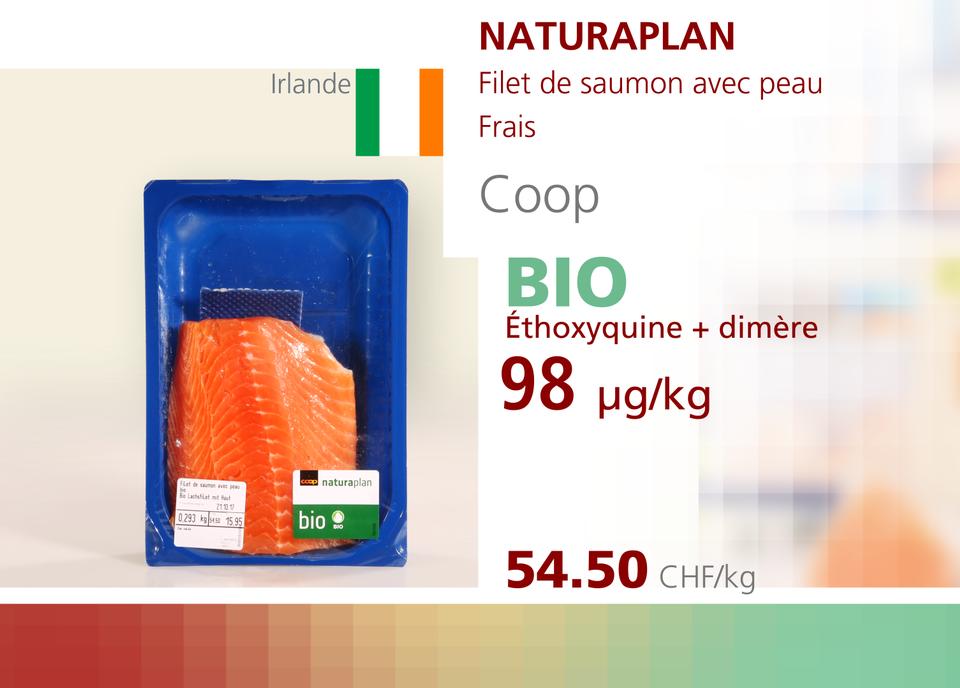 ABE WEB saumon 00009 [RTS]