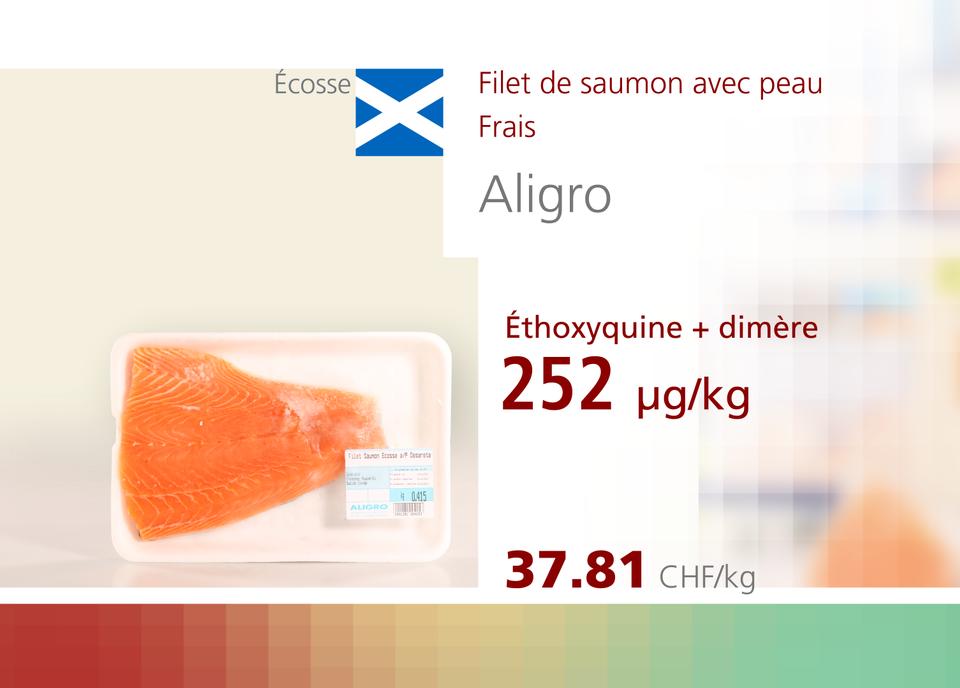 ABE WEB saumon 00011 [RTS]