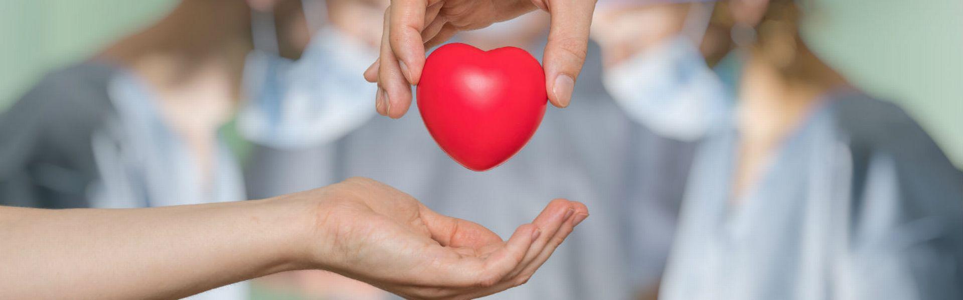 Le dossier sur le don d'organe de RTS Découverte [© vchalup - Fotolia]