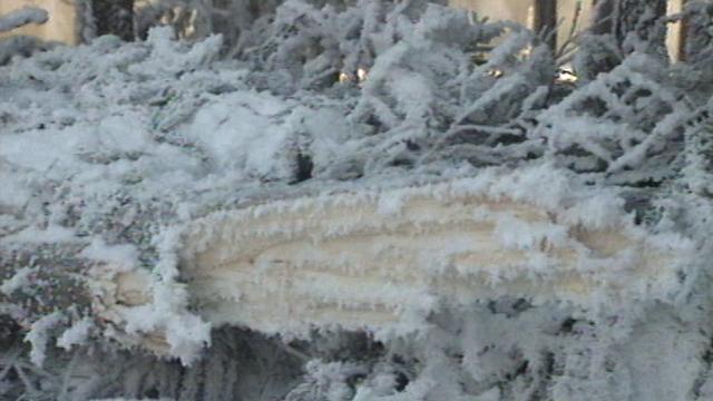 Alerte au gel à Bure en janvier 1997. [RTS]