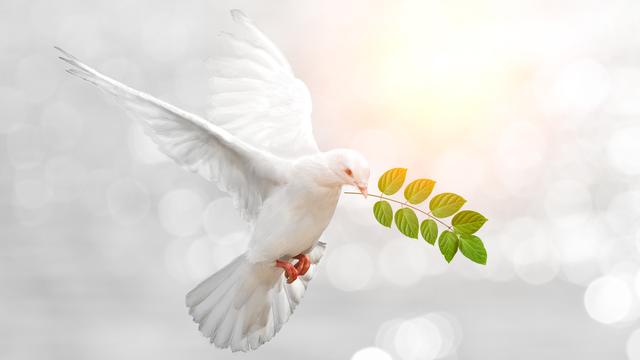 La paix est-elle envisageable dans un futur proche? [Sakepaint - Fotolia]