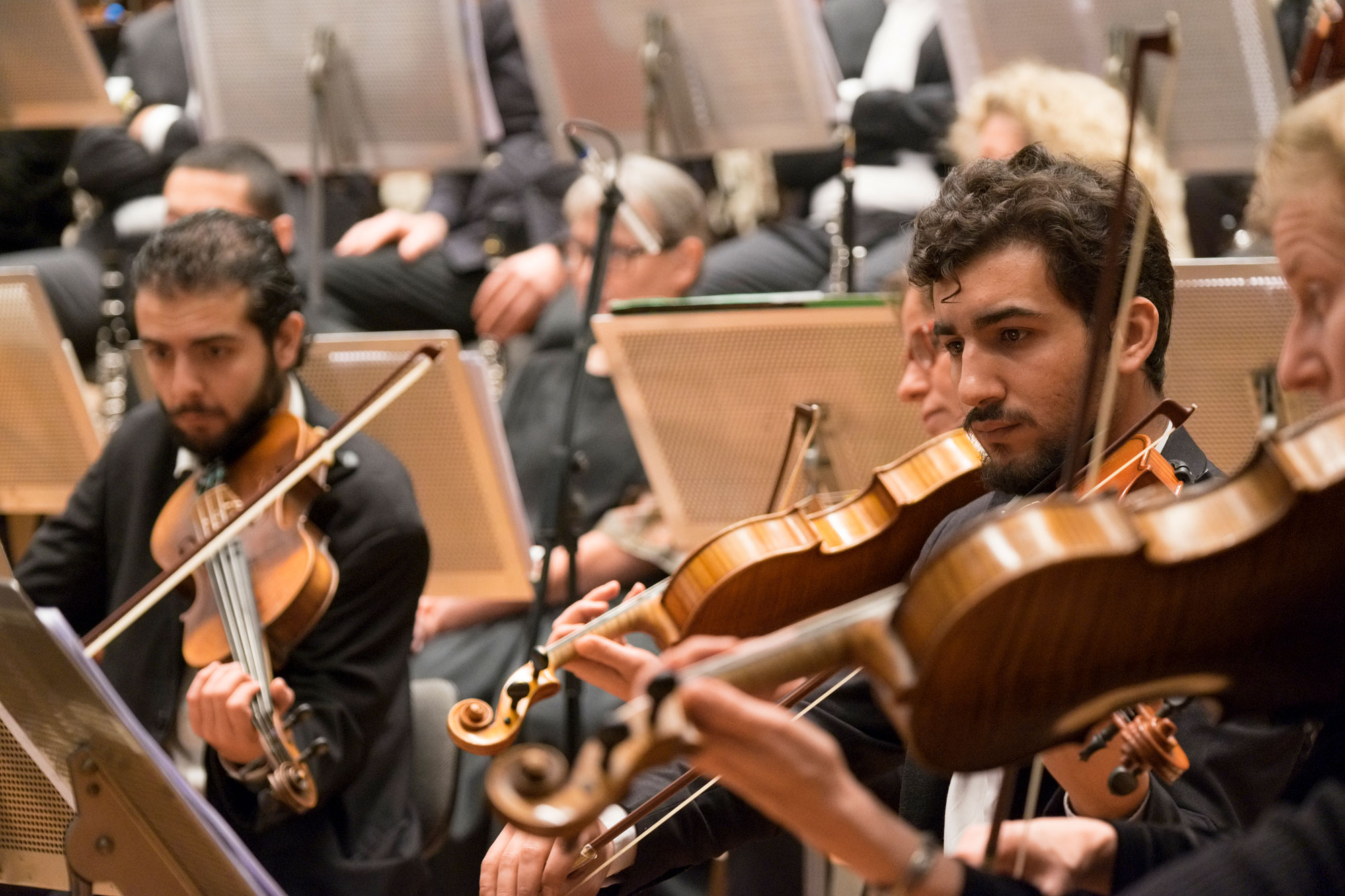 Le Syrian Expat Philharmonic Orchestra (SEPO).