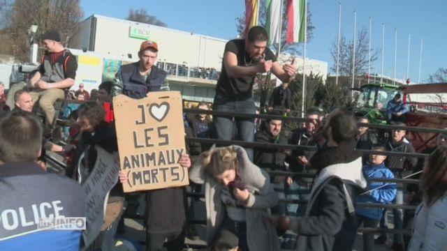 Accrochages entre antispécistes et agriculteurs lors à Lausanne. [RTS]