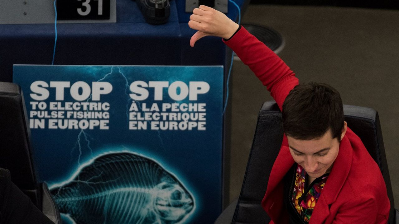 La vice-présidente du Parti écologiste européen, l'Allemande Ska Keller, lors des débats au Parlement européen. [Patrick Seeger - Keystone/EPA]
