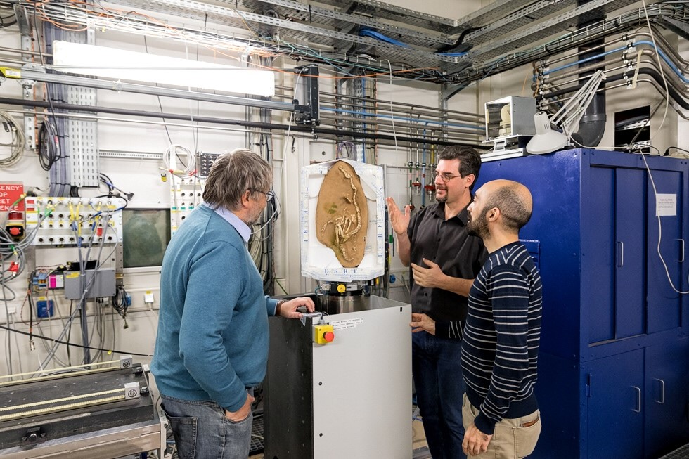 Des collaborateurs de l'European synchrotron Radiation Facility autour d'un fossile de dinosaure.