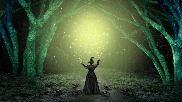 A Halloween, les sorcières sont reines. [freshidea - Fotolia]