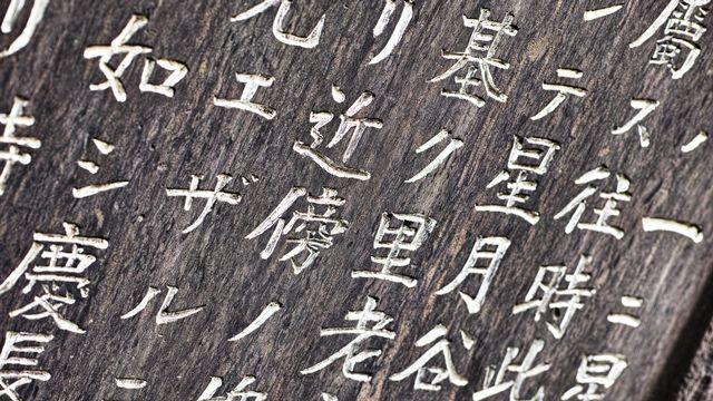 Un exemple de sinogrammes. [7maru - Fotolia]